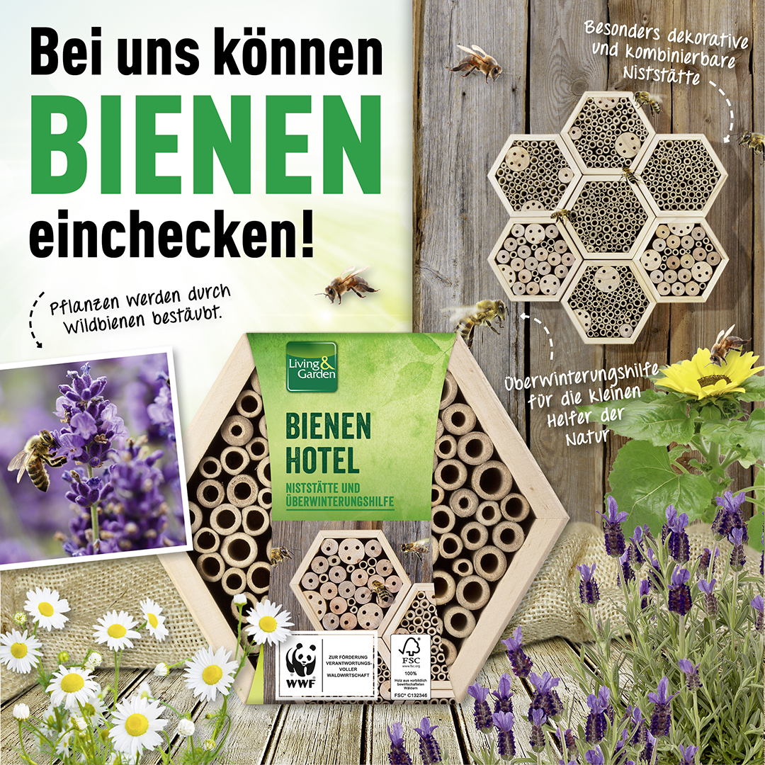 🐝Bei uns können Bienen einchecken!🐝